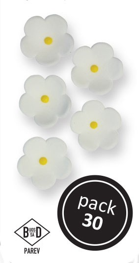 PME Blüten aus Zucker  ca 1,5 cm - Weiß - 30 Stück